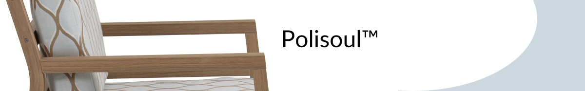 polisouls.jpg
