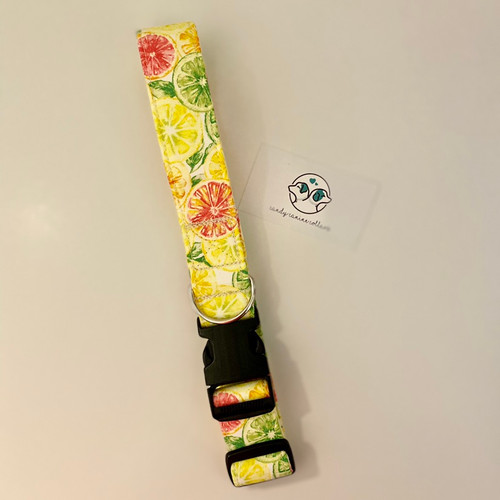 Citrus Summer Dog Collar