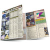 QuickStudy   Rocks & Minerals Laminated Reference Guide