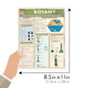 Quick Study QuickStudy Botany Laminated Study Guide BarCharts Publishing Life Physical Science Guide Size