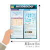 QuickStudy Quick Study Microbiology Laminated Study Guide BarCharts Publishing Science Study Guides Size