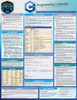 Quick Study QuickStudy C++ Programming Language Laminated Study Guide BarCharts Publishing Computer Education Reference Cover Image