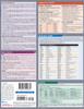 Quick Study QuickStudy Spanish Grammar Laminated Study Guide BarCharts Publishing Spanish Grammar Back Page Image