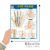 Quick Study QuickStudy The Hand Laminated Study Guide BarCharts Publishing Medical Reference Guide Size