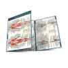 QuickStudy   Anatomy of The Muscular System Laminated Pocket Guide
