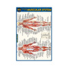 QuickStudy | Anatomy of The Muscular System Laminated Pocket Guide