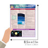 Quick Study QuickStudy Meteorology Laminated Study Guide BarCharts Publishing Earth Science Reference Guide Size