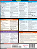 Quick Study QuickStudy iPhone & iPad iOS 13 Laminated Reference Guide BarCharts Publishing Mobile Operating System Reference Back Image