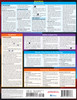 Quick Study QuickStudy iPhone & iPad iOS 14 Laminated Reference Guide BarCharts Publishing Mobile Operating System Reference Back Image