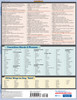 Quick Study QuickStudy Writing Tips & Tricks: Term Paper Vocabulary Laminated Study Guide BarCharts Publishing Language Arts Academic Reference Guide Back Image