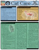 Quick Study QuickStudy Cat Care Laminated Reference Guide BarCharts Publishing Pet Care & Health Reference Cover Image