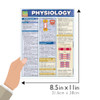 Quick Study QuickStudy Physiology Laminated Study Guide BarCharts Publishing Physiology Reference Size
