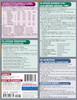 Quick Study QuickStudy Portuguese Grammar Laminated Study Guide BarCharts Publishing Language Guide Back Image