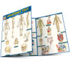 QuickStudy | Anatomy Test Laminated Study Guide