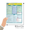 Quick Study QuickStudy HTML Guide Laminated Reference Guide BarCharts Publishing Computer Guide Size