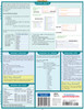 Quick Study QuickStudy Cascading Style Sheets Laminated Reference Guide BarCharts Publishing Computer Education Back Image