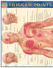 Quick Study QuickStudy Trigger Points Laminated Study Guide BarCharts Publishing Trigger Points Cover Image