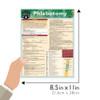 Quick Study QuickStudy Phlebotomy Laminated Study Guide BarCharts Publishing Inc Phlebotomy Guide Size