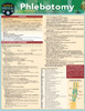 Quick Study QuickStudy Phlebotomy Laminated Study Guide BarCharts Publishing Inc Phlebotomy Guide Cover Image