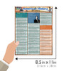 Quick Study QuickStudy American History: 20th Century Laminated Study Guide BarCharts Publishing Size