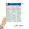Quick Study QuickStudy Criminology Laminated Reference Guide BarCharts Publishing Academic Legal Education Guide Size