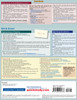 Quick Study QuickStudy Home-Based Business Laminated Study Guide BarCharts Publishing Business Reference Back Image
