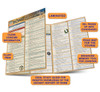 Quick Study QuickStudy Rome: Ancient History Laminated Study Guide BarCharts Publishing World Historical Reference Guide Benefits