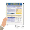 Quick Study QuickStudy Nursing 2 Laminated Study Guide BarCharts Publishing Medical Study Guide Size