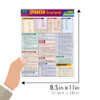 Quick Study QuickStudy Spanish Grammar Quizzer Laminated Study Guide BarCharts Publishing Inc Guide Size