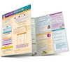 QuickStudy | Math Review: Fractions Laminated Study Guide