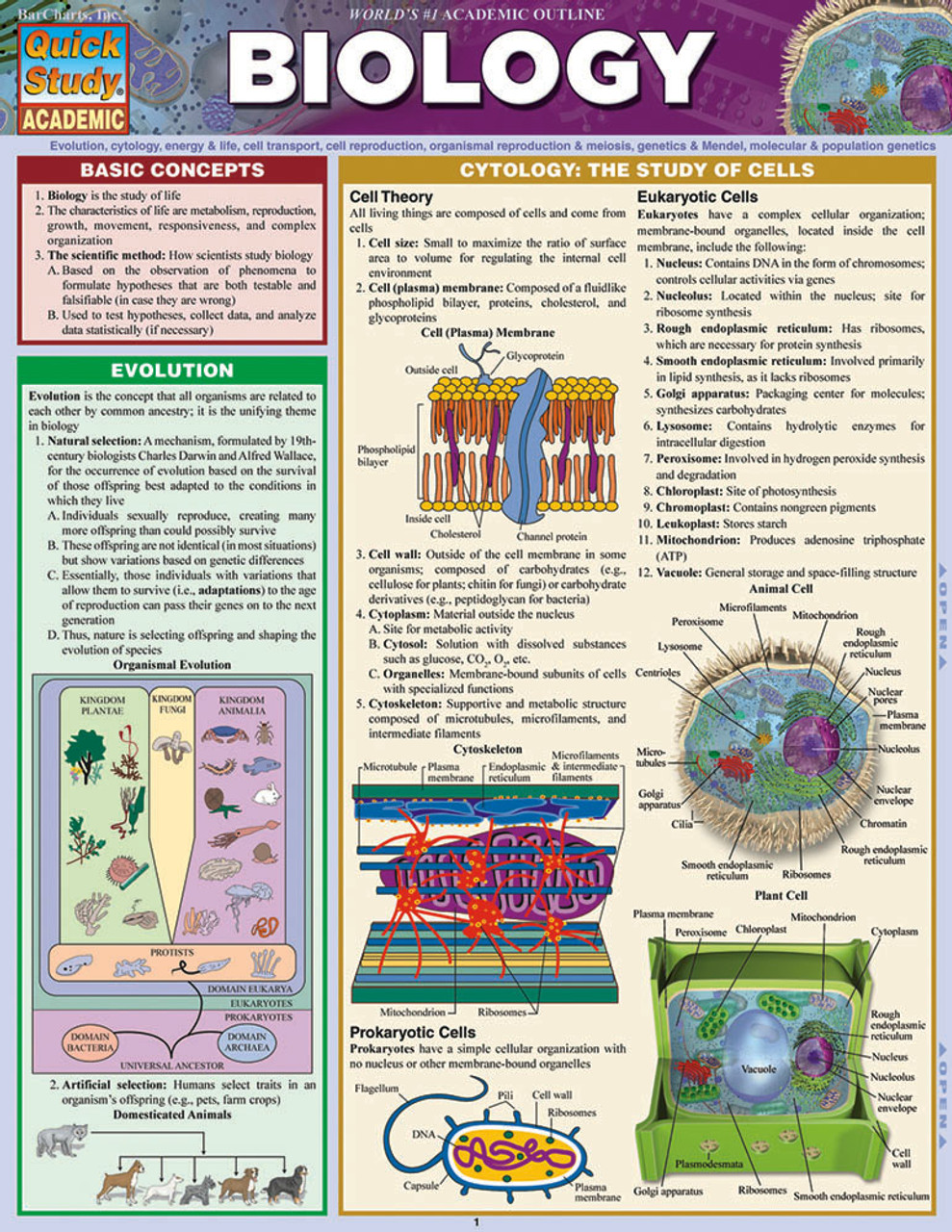 Quickstudy Biology Laminated Study Guide 9781423219538