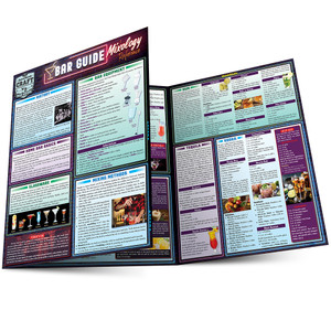 Quick Study QuickStudy Bar Guide: A Mixology Laminated Reference Guide BarCharts Publishing Lifestyle Reference Main Image