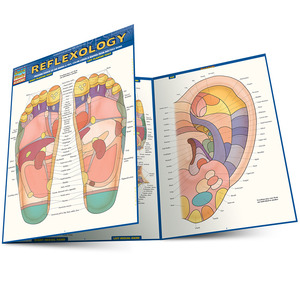 Quick Study QuickStudy Reflexology Laminated Study Guide BarCharts Publishing Medical Reference Guide Main Image