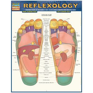 Quick Study QuickStudy Reflexology Laminated Study Guide BarCharts Publishing Medical Reference Guide Cover Image