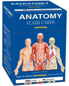 QuickStudy | Anatomy Flash Cards