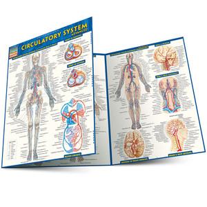 QuickStudy | Circulatory System Advanced Laminated Study Guide