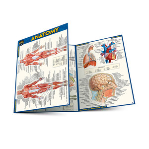 QuickStudy | Anatomy Laminated Pocket Guide