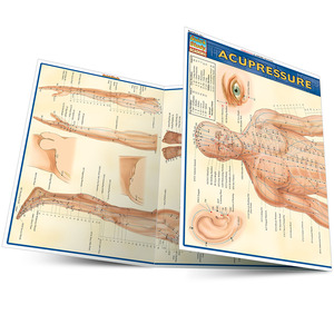 Quick Study QuickStudy Acupressure Laminated Study Guide BarCharts Publishing Acupressure Reference Main Image