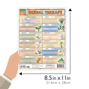 QuickStudy | Herbal Therapy Laminated Reference Guide
