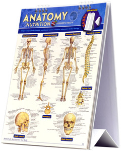 QuickStudy Anatomy & Nutrition: For Body & Health Easel