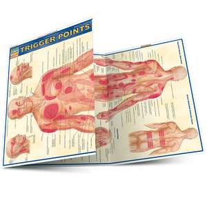 Quick Study QuickStudy Trigger Points Laminated Study Guide BarCharts Publishing Trigger Points Guide Main Image