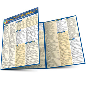 QuickStudy | Anatomy Terminology Laminated Study Guide