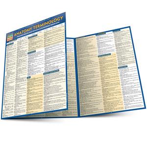 Quick Study QuickStudy Anatomy Terminology Laminated Study Guide BarCharts Publishing Anatomy Guide Main Image