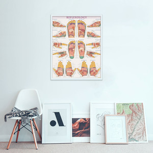 QuickStudy Reflexology Laminated Poster