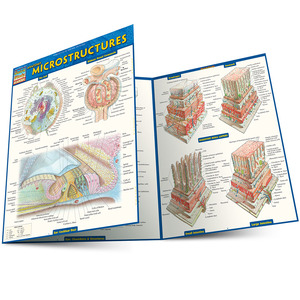 Quick Study QuickStudy Anatomy: Microstructures Laminated Study Guide BarCharts Publishing Academic Medical Reference Guide Main Image