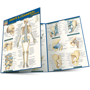 QuickStudy | Joints & Ligaments Advanced Study Guide