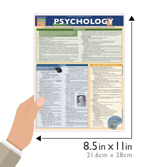 QuickStudy Quick Study Psychology Laminated Study Guide BarCharts Publishing Social Sciences Studies Guide Size