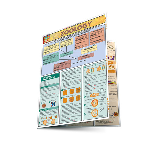 QuickStudy | Zoology Laminated Study Guide