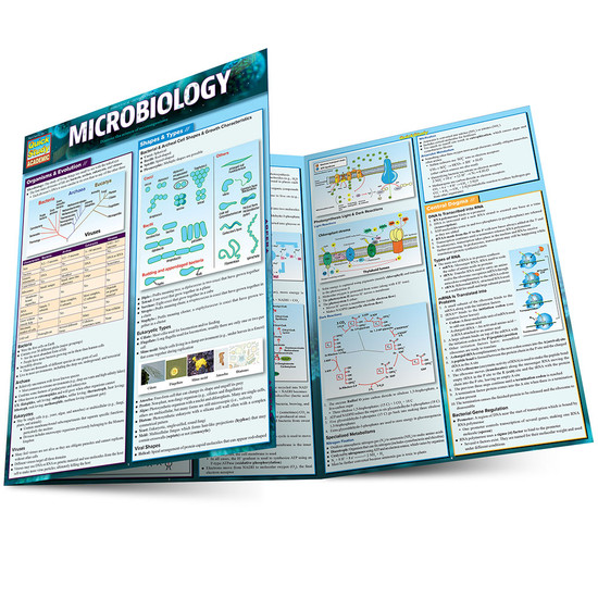 QuickStudy Quick Study Microbiology Laminated Study Guide BarCharts Publishing Science Study Guides Main Image