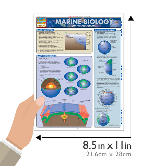 Quick Study QuickStudy Marine Biology Laminated Study Guide BarCharts Publishing Academic Reference Guide Size